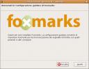 schermata-configurazione-guidata-di-foxmarks.png
